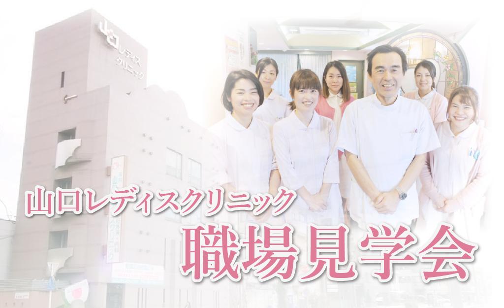 職場見学会2019年_名古屋市南区不妊治療専門山口レディスクリニック