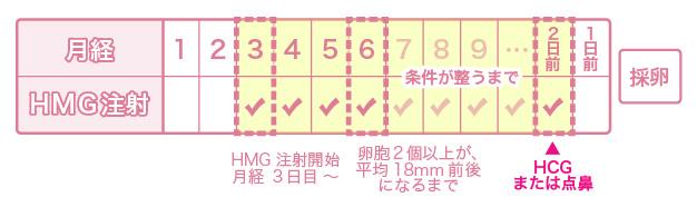 アンタゴニスト法採卵による体外受精を受けられる方へ - 名古屋不妊治療山口レディスクリニック