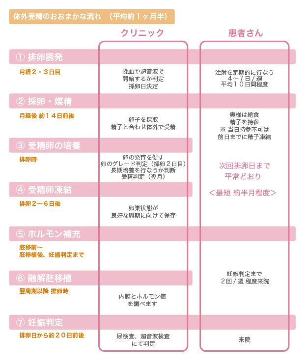体外受精のおおまかな流れ図説 - 名古屋不妊治療山口レディスクリニック